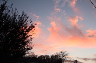 Sunset Nov 25 (13)