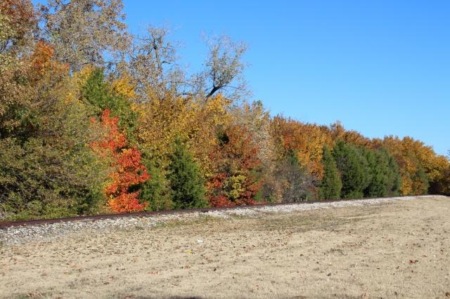 autumn 143