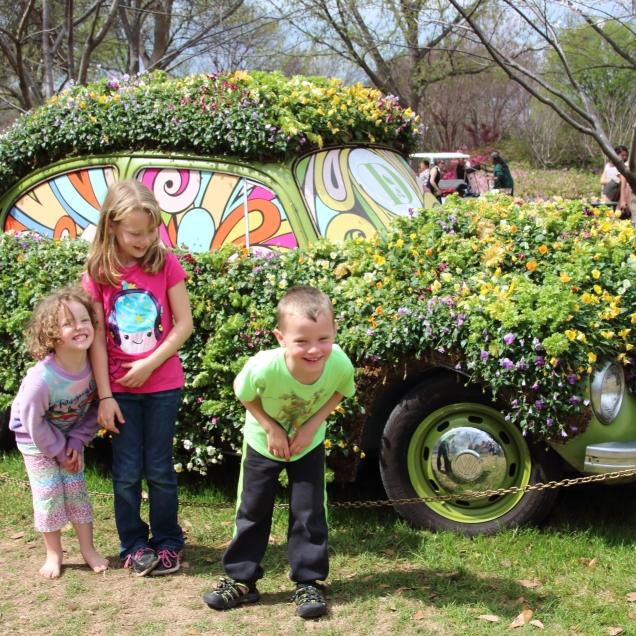 Arboretum Dallas Blooms